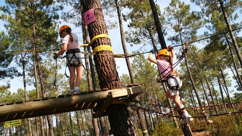 Climbing in forest trees IMG_0683